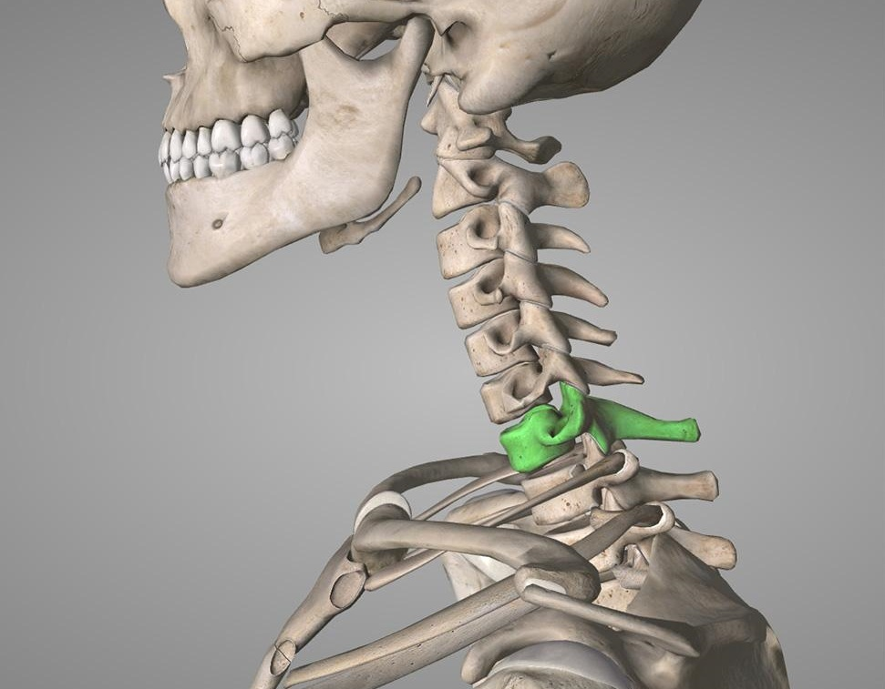 Артропластика шейного диска