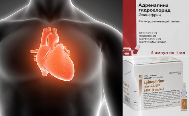 Препараты в ампулах. Серце