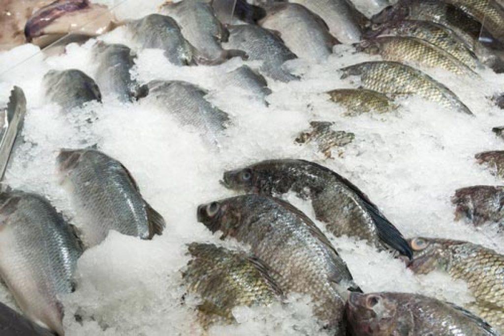 Холодильная витрина рыбы на льду
