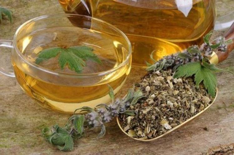 Один из самых простых способов применения пустырника - это заварить ароматный чай на его основе