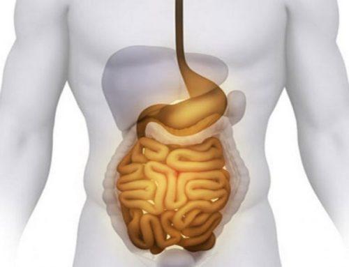 Нарушение всасывания кишечника