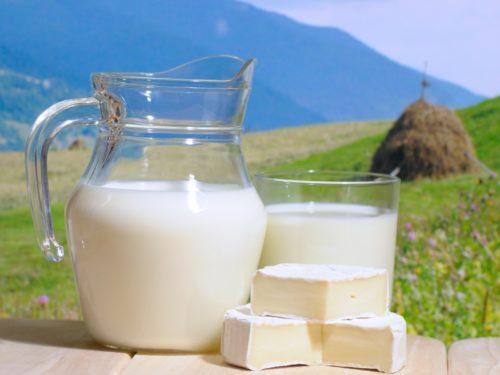 Лактоза в молоке может спровоцировать вздутие живота и избыточные газы