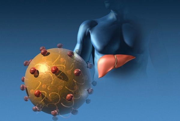 Профилактика гепатитов В С D