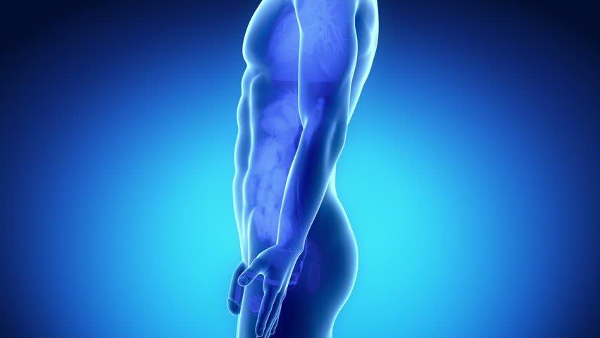 Боль при эякуляции – самый неприятный их признак, который разрушает суть полового контакта