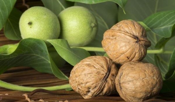 Как вылечить ожирение печени в домашних условиях