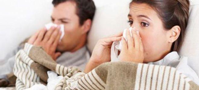 Чем лучше лечить насморк: самые эффективные средства