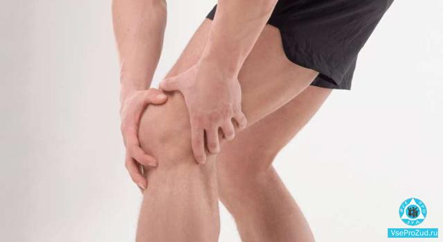 Почему чешется под коленками на сгибах с внутренней стороны. Зуд под коленями, почему чешется под коленями, причины, как избавиться