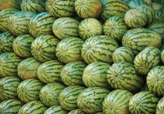 Торговля арбузами