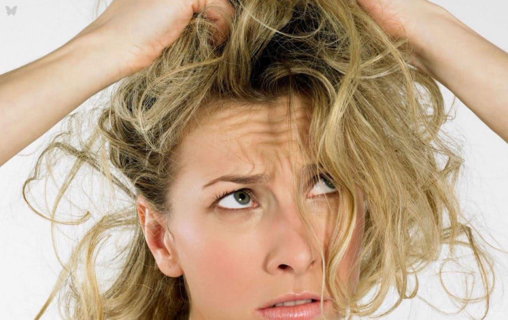 Обзор противогрибковых шампуней для головы и тела, а также помощь в выборе средства