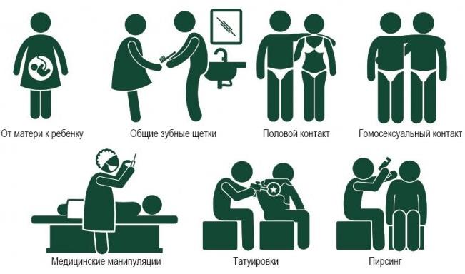 Как стать носителем гепатита С