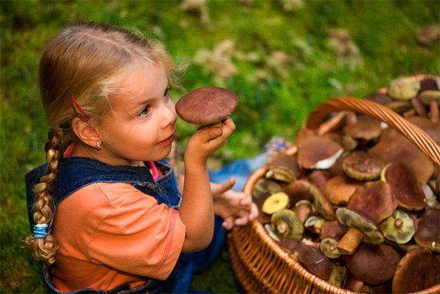 Отравление грибами вызывает боли в животе