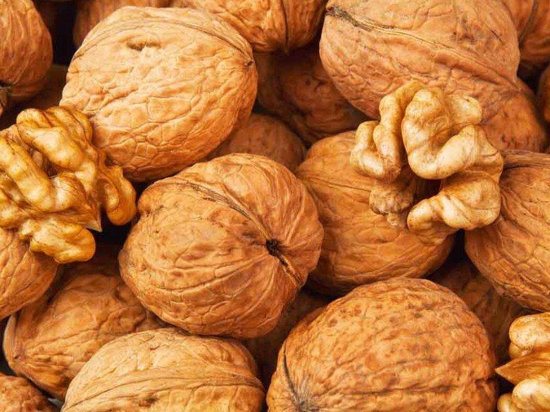 Грецкий орех свойства при потенции