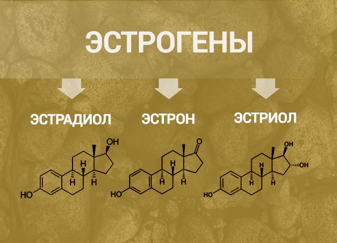 Эстрогены - химический состав