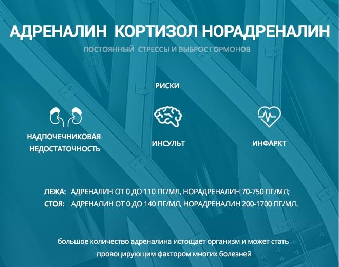 Вред адреналина на организм человека - инфографика