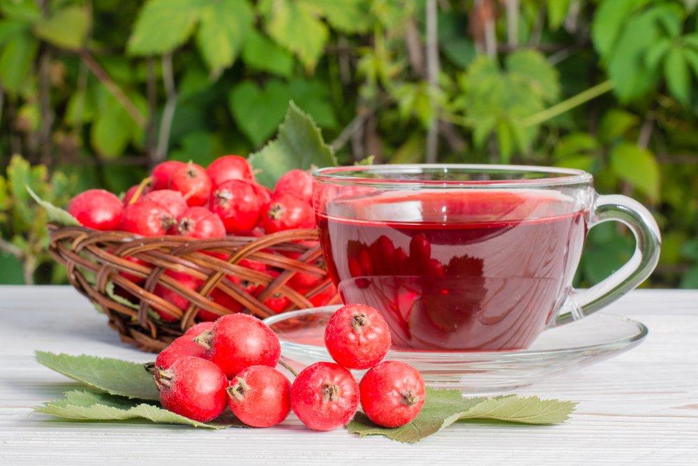 Из плодов можно приготовить отвары настойки, которые мягко воздействует на центральную нервную систему