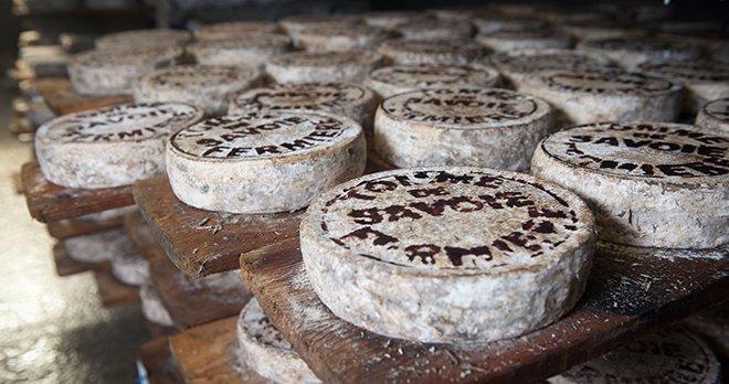 Еда для серотонина - сыр
