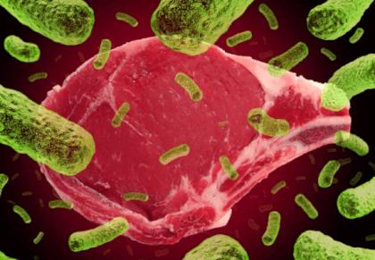 Микробы в пищевых продуктах