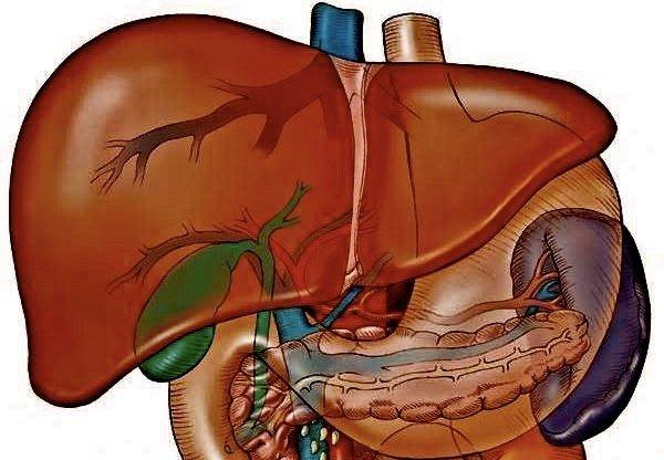 Медикаментозный гепатит