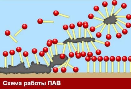 Действие ПАВов