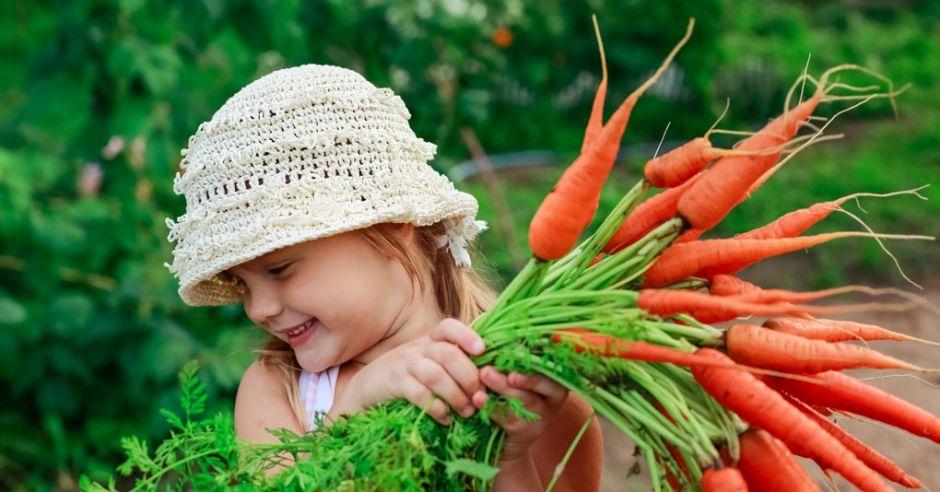 Морковь полезна детям