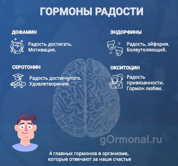 Гормоны счастья, инфограмма