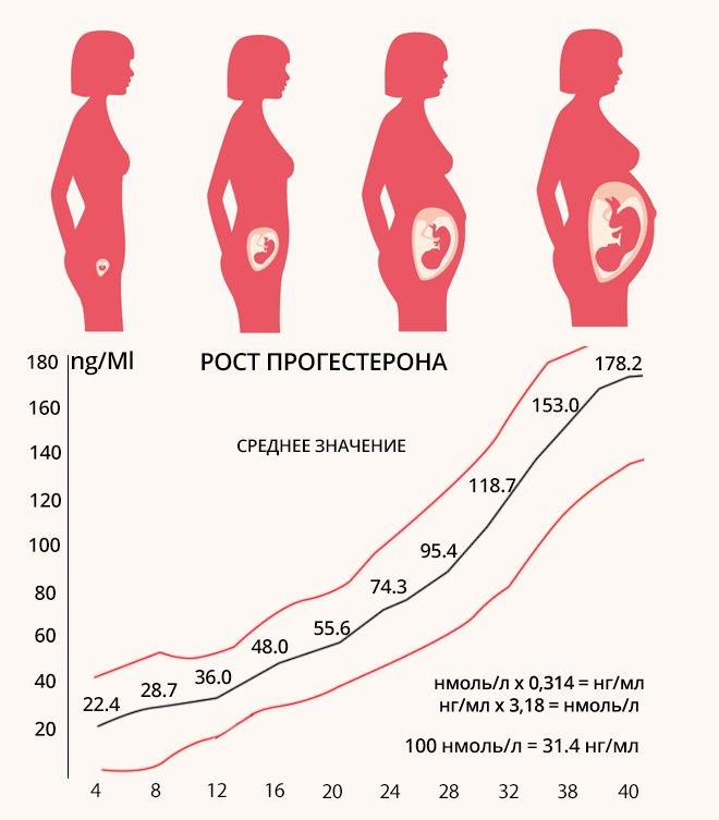 Норма прогестерона в беременных